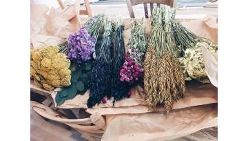 Le retour des fleurs séchées